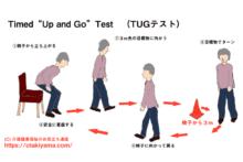 Timed Up and Go Test(TUGテスト)の測定方法 転倒リスク評価