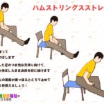 腰痛改善の3つの体操 椅子座位で簡単にできるトレーニング