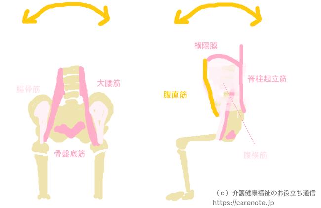 座位保持で重要な筋肉・筋力とは