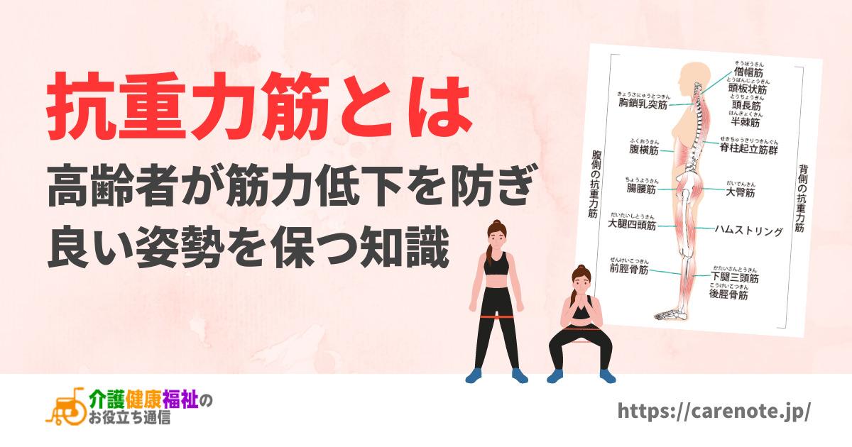 抗重力筋とは 高齢者が筋力低下を防ぎ良い立位姿勢を保つ知識